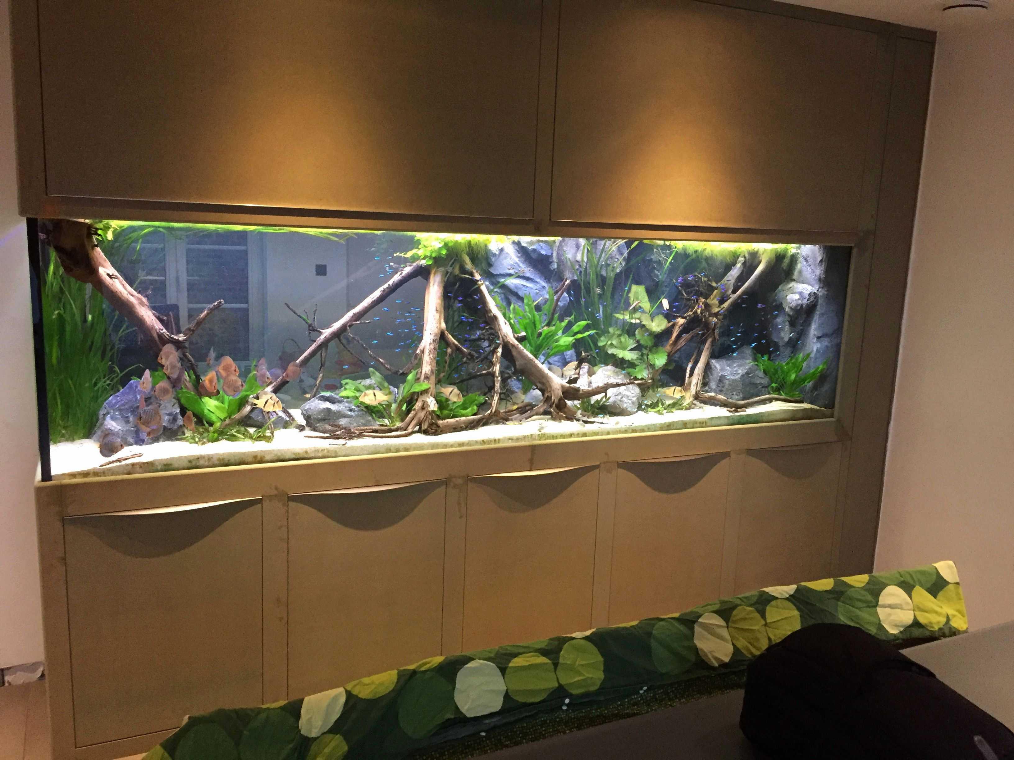 100 Concept Meuble Aquarium Pas Cher Destine Aquarium Meuble Pas Cher Agencecormierdelauniere Com Agencecormierdelauniere Com