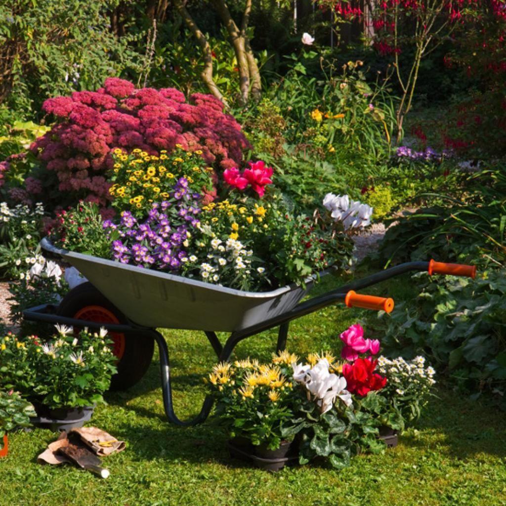 14 Idées De Brouettes Ornementales | Amenagement Jardin tout Brouette Deco Jardin