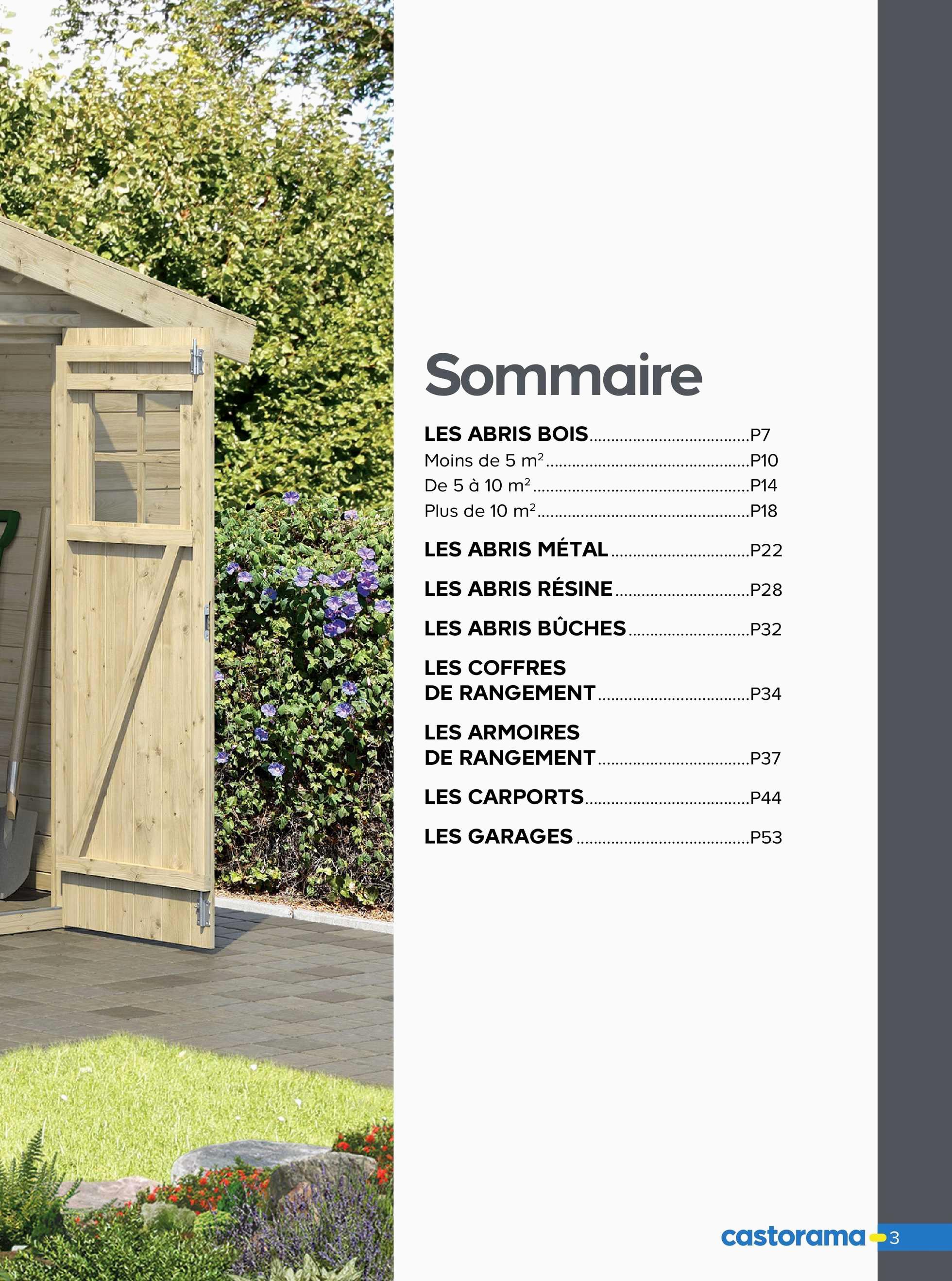 Abri De Jardin Promotion Carrefour Phénoménal Catalogue tout Abri De Jardin Carrefour