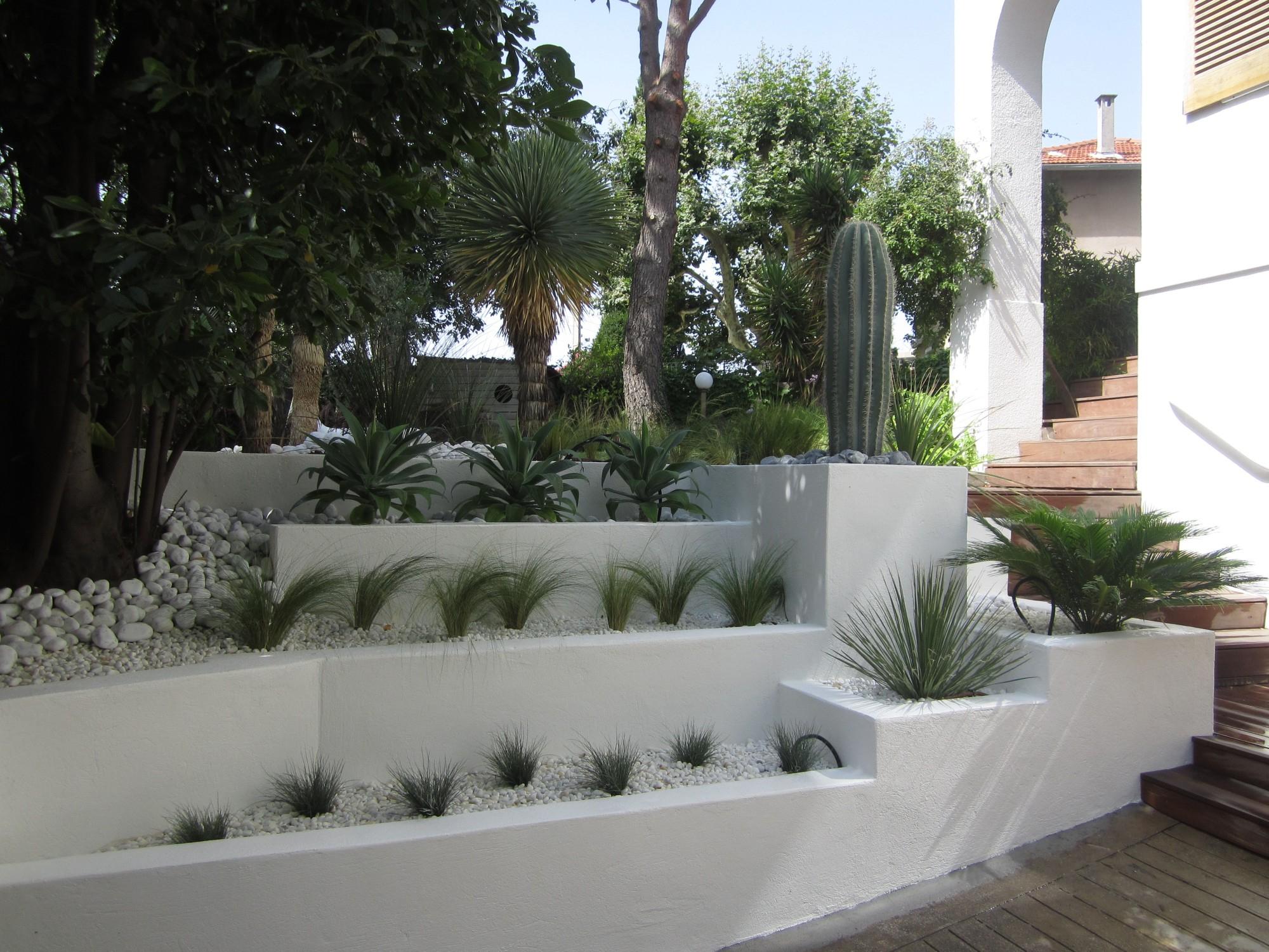 Aménagement Paysager De Jardin Sec À Marseille - Vert Tige intérieur Exemple D Aménagement De Jardin