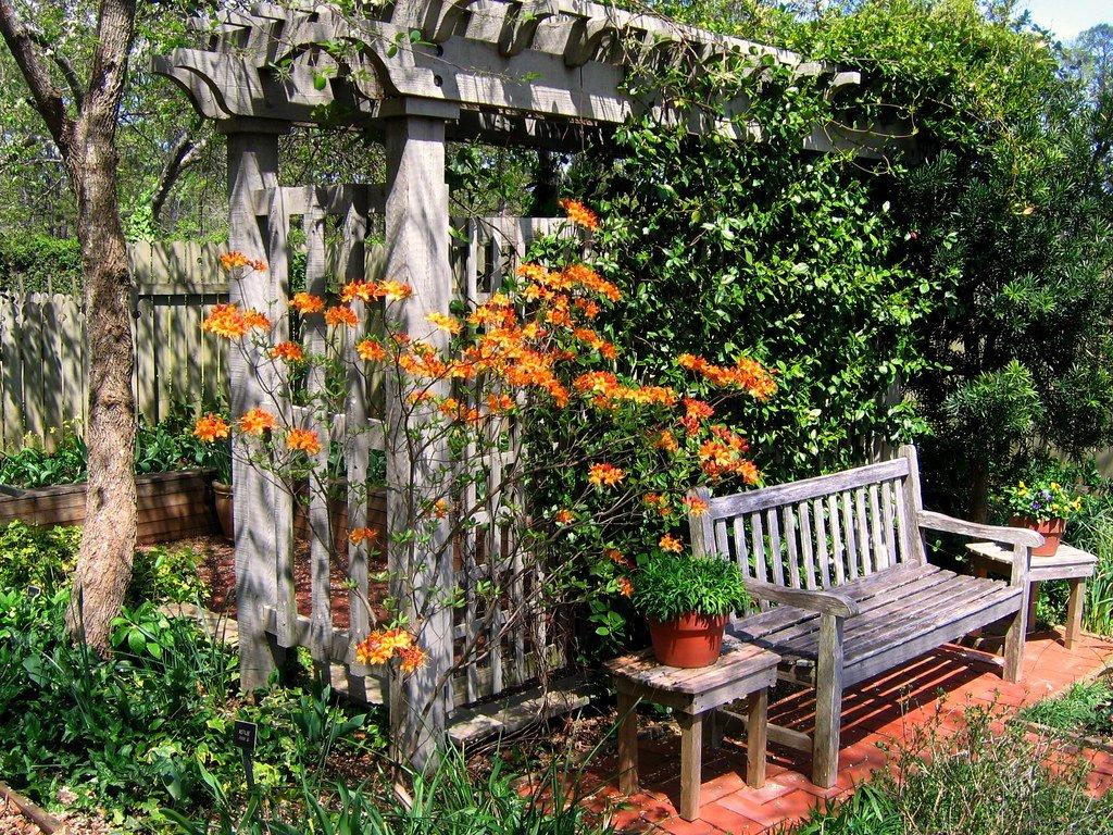 Arceau Bois Plantes Grimpantes - Abri Jardin Bois France encequiconcerne Arceau Jardin