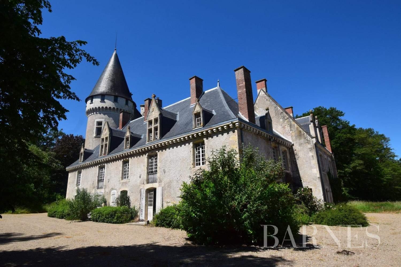 Au Centre De La France Un Château, Une Gentilhommière Et avec Chambre D Hote Saint Amand Montrond