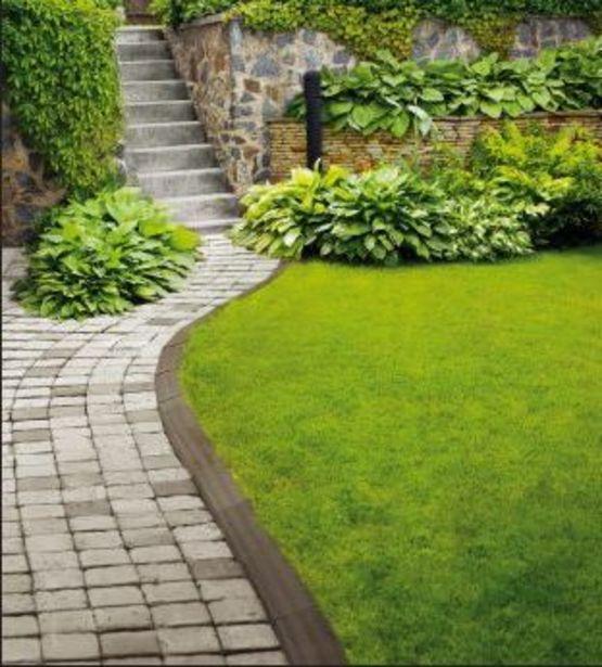 Bordures De Jardin : Bordure En Terre Cuite Pour concernant Delimitation Jardin
