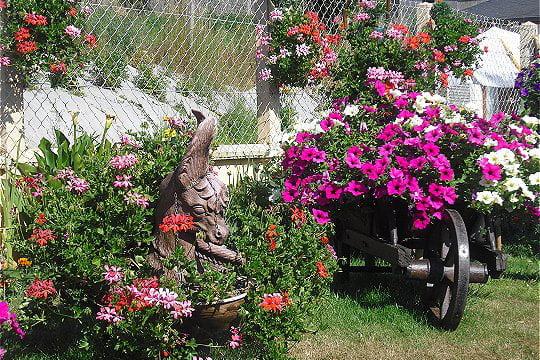 Brouette destiné Brouette Deco Jardin