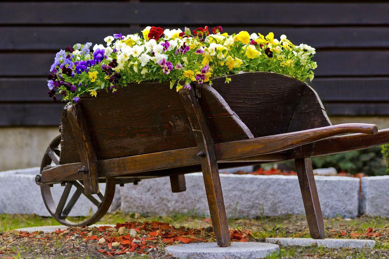 Brouette Jardin Bois D'occasion intérieur Brouette Deco Jardin