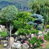 Camelot Haven : Le Paradis Des Lamas… Au Canada intérieur Abri De Jardin Style Japonais