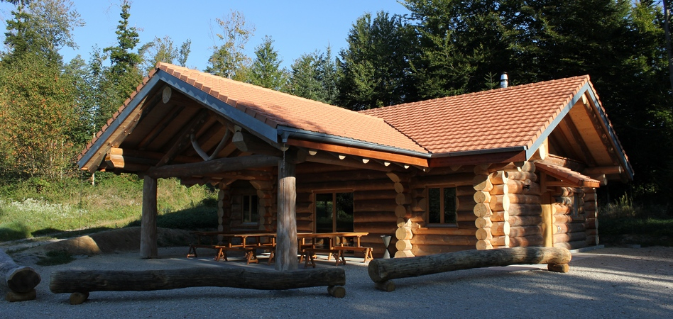 Chalet En Bois Habitable - Abri Jardin Bois France serapportantà Abri De Jardin Semi Habitable