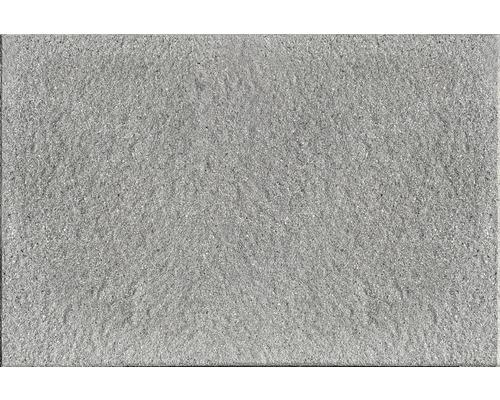 Dalle De Terrasse Scalpellinata Grise 40X60X3,9 Cm avec Dalle Beton Hornbach