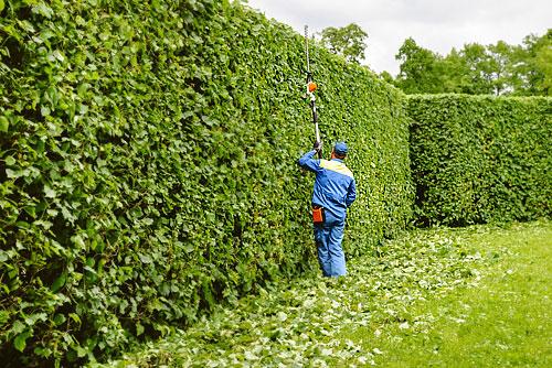 Entretien Du Jardin : Combien Va-T-Il Vous Coûter destiné Tarif Horaire Entretien Jardin