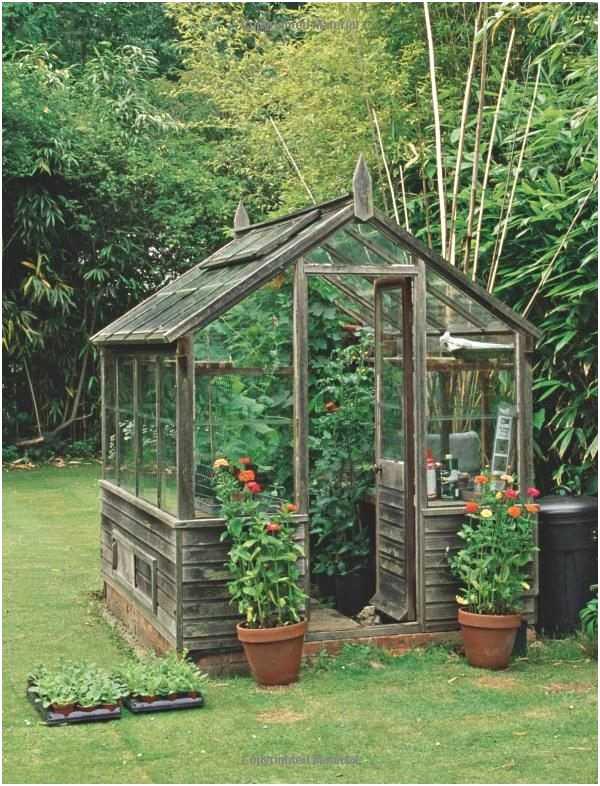 Fabriquer Une Serre De Jardin Pas Cher Nouveau Serre serapportantà Petite Serre De Jardin Pas Cher