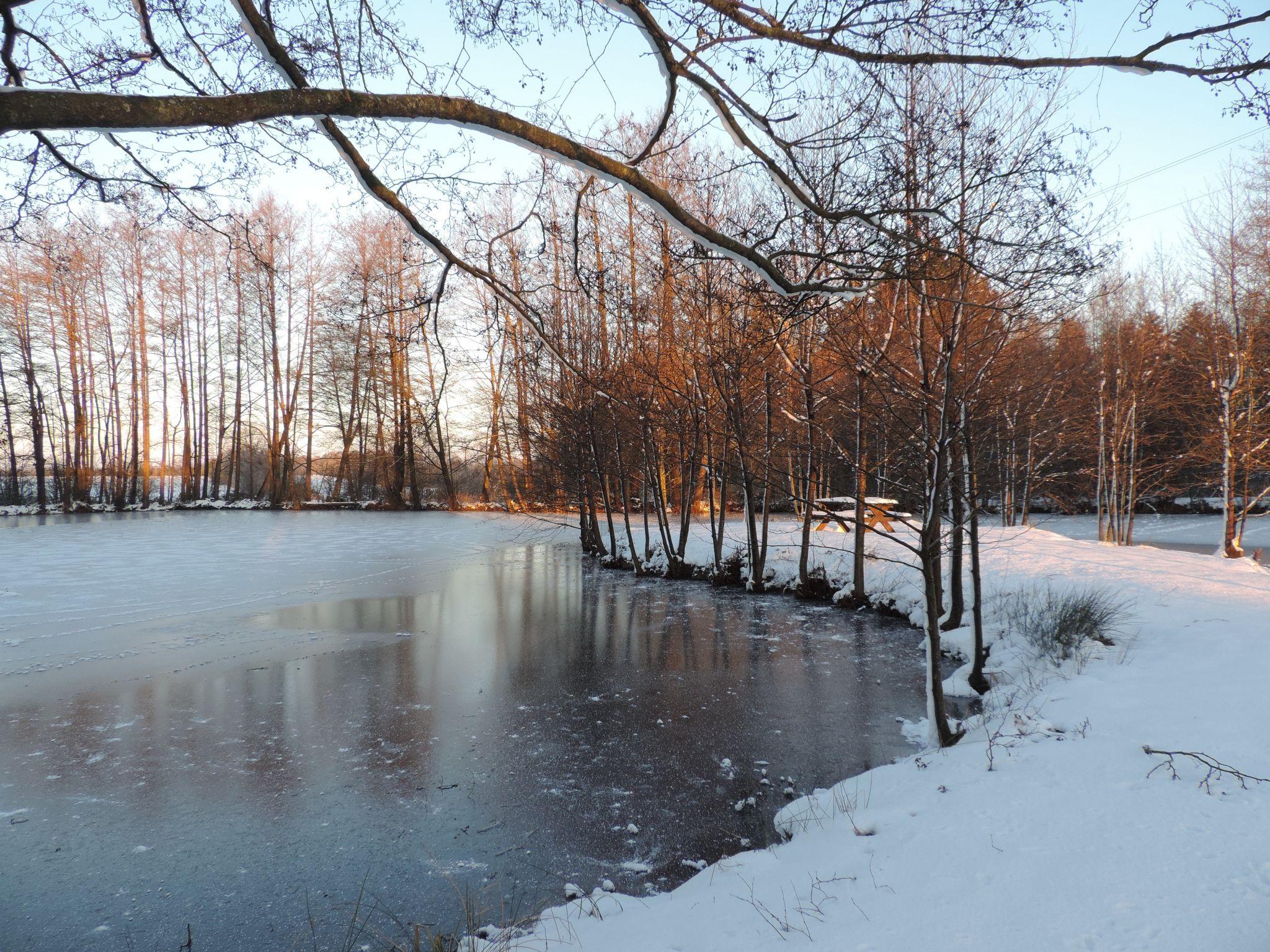 Fin Janvier 2017 - Le Domaine Du Lac À Rocroi: Chambres Et avec Chambre D Hote Clairvaux Les Lacs