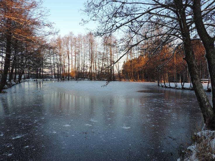 Fin Janvier 2017 - Le Domaine Du Lac À Rocroi: Chambres Et intérieur Chambre D Hote Clairvaux Les Lacs