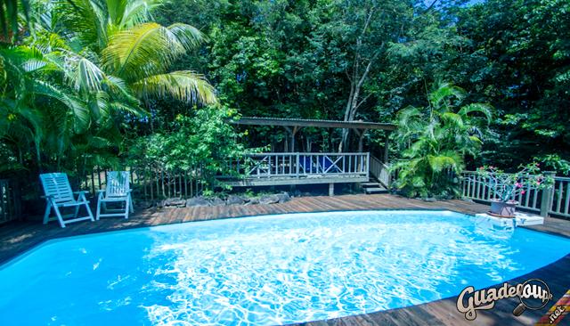Gîte Au Jardin Des Colibris Sur Guadeloupe à Au Jardin Des Colibris