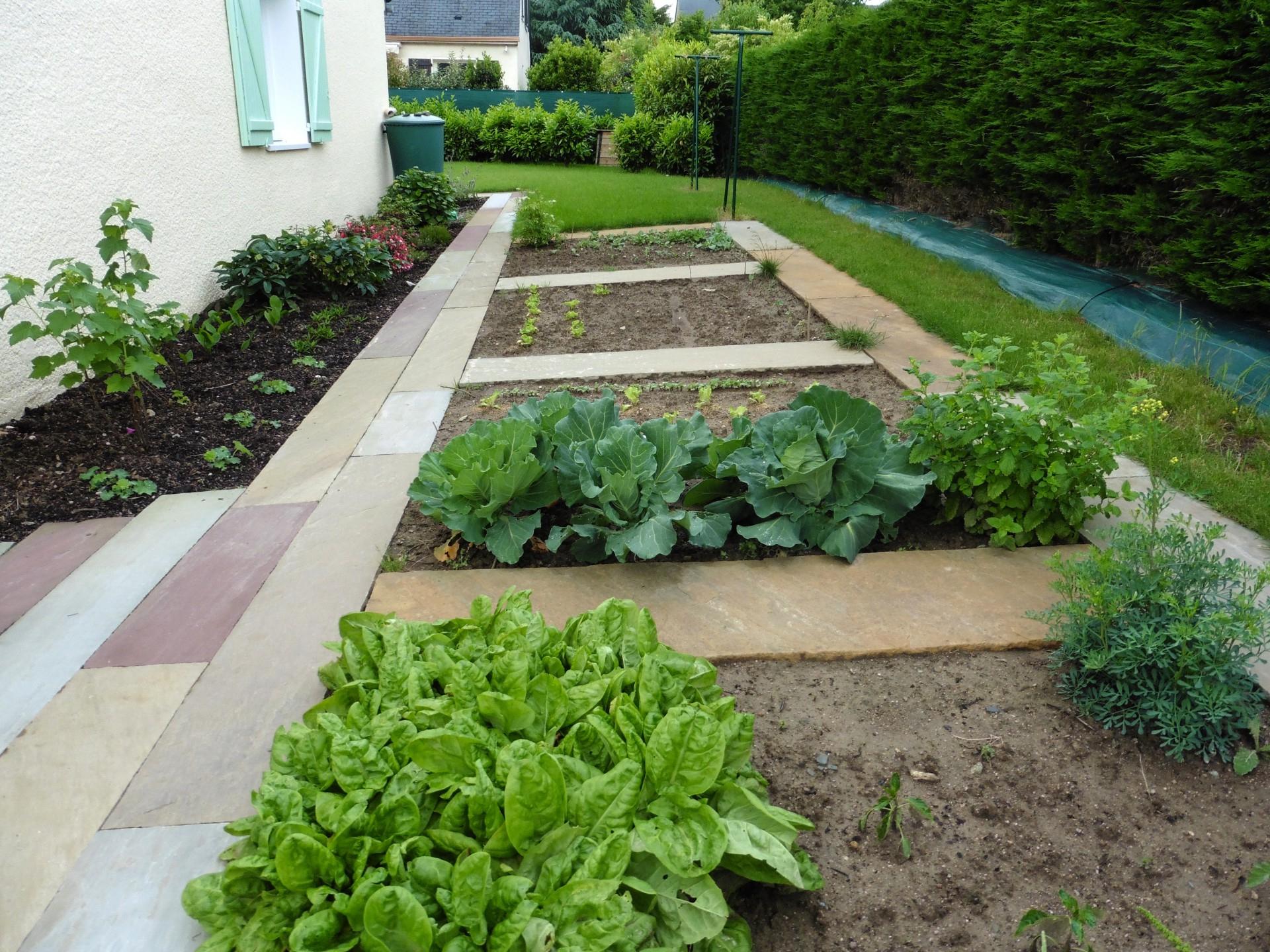 Idée Jardin Et Création D'Un Potager Avec Mes Conseils Jardin intérieur Delimitation Jardin