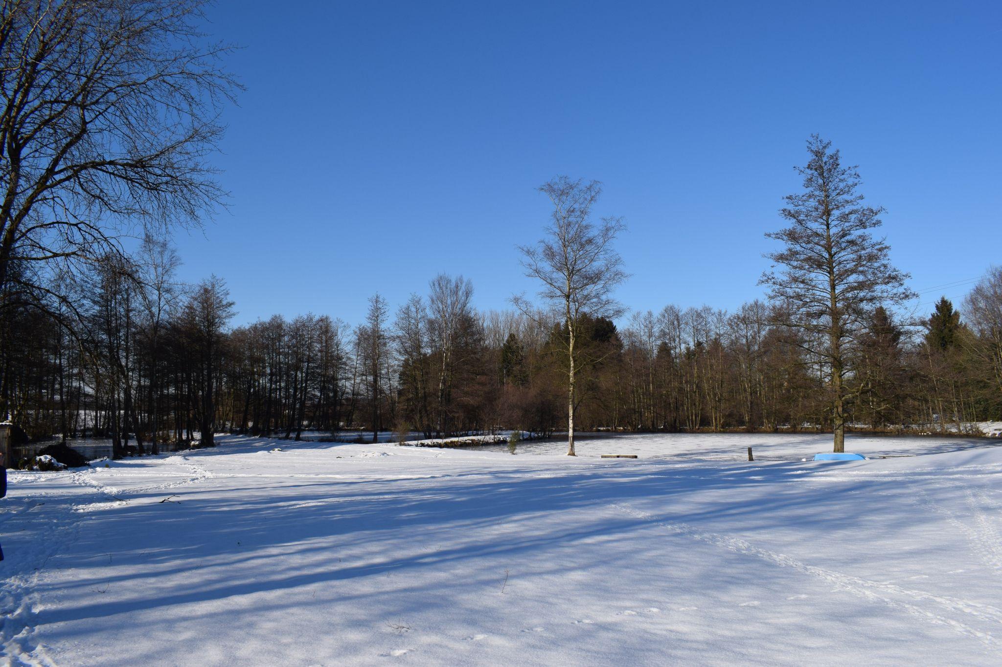 La Neige N'Est Plus Qu'Un Souvenir - Le Domaine Du Lac à Chambre D Hote Clairvaux Les Lacs