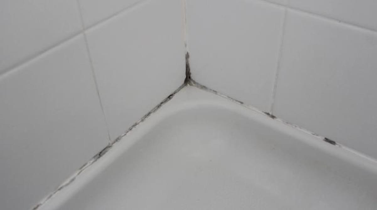 L'astuce Qui Marche Pour Enlever La Moisissure Des Joints De concernant Comment Nettoyer Des Joints De Salle De Bain