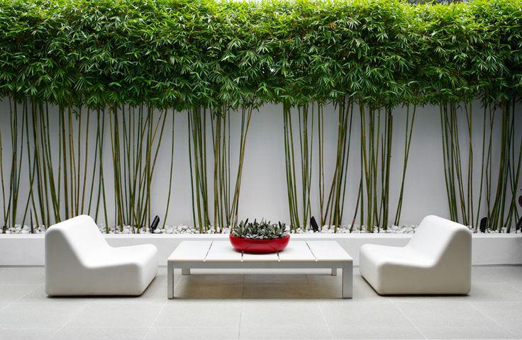 """Le Bambou, La Touche Déco Au Jardin – Blog """"Ma Maison Mon dedans Déco Jardin Bambou"""