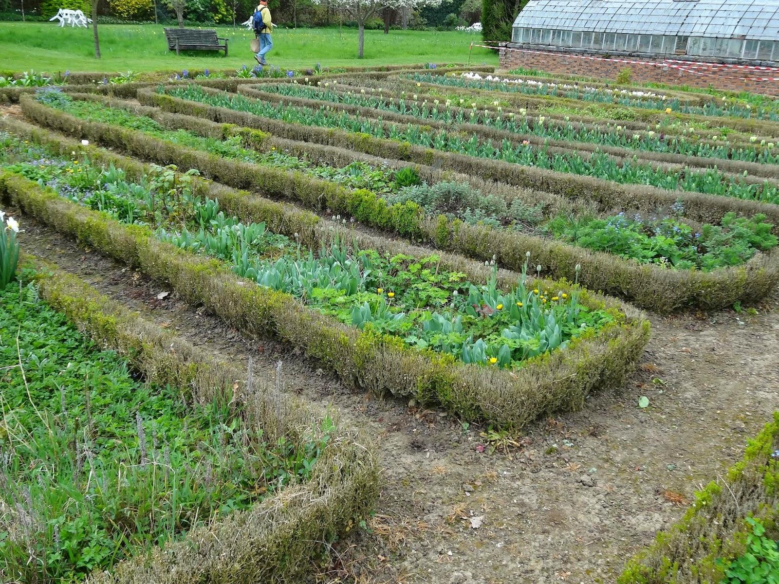 Le Blog De Parcs Et Jardins De L'Oise: La Maladie Des Buis serapportantà Delimitation Jardin