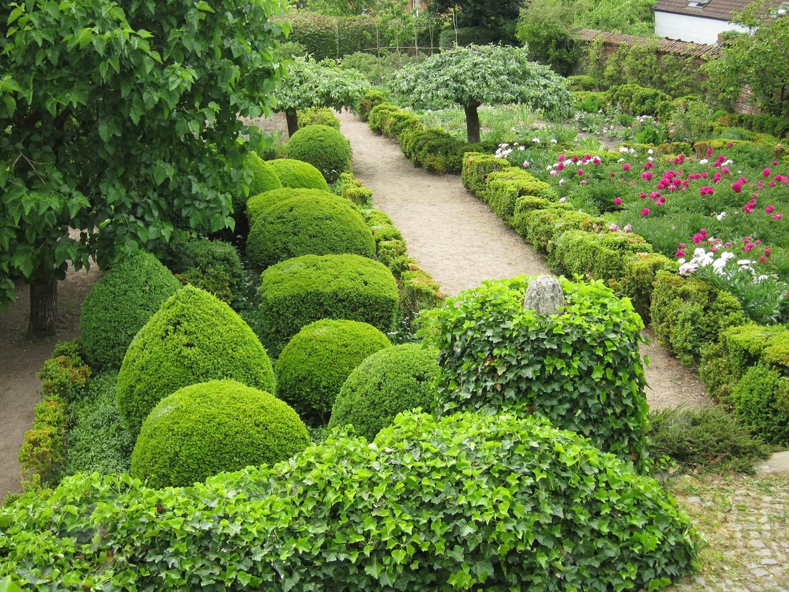 Le Jardin De Pivoines De Marie - La Terre Est Un Jardin concernant Les Jardins De Lourdes