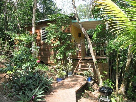 Le Lit - Picture Of Au Jardin Des Colibris Ecolodge&Spa destiné Au Jardin Des Colibris
