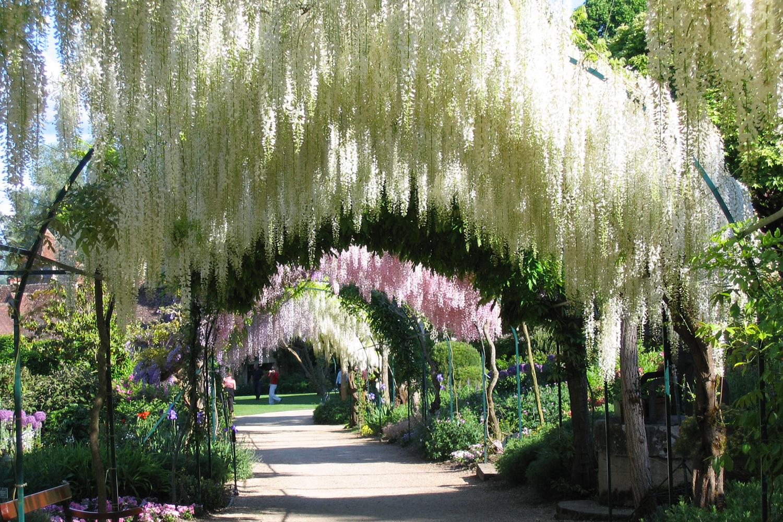 Le Parc Floral - Apremont-Sur-Allier dedans Chambre D Hote Apremont Sur Allier