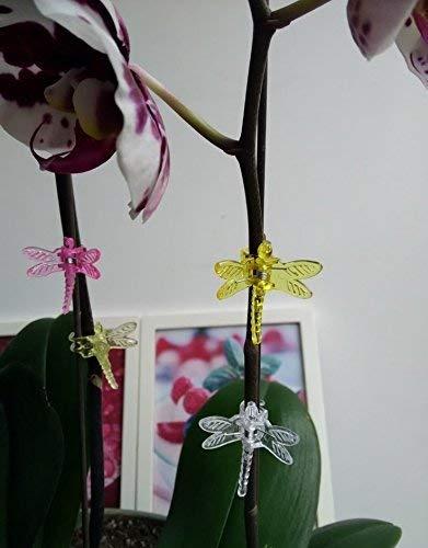 Lot De 30 Orchidée Pinces Clips Pour Plantes Libellule tout Idée Cadeau Jardin