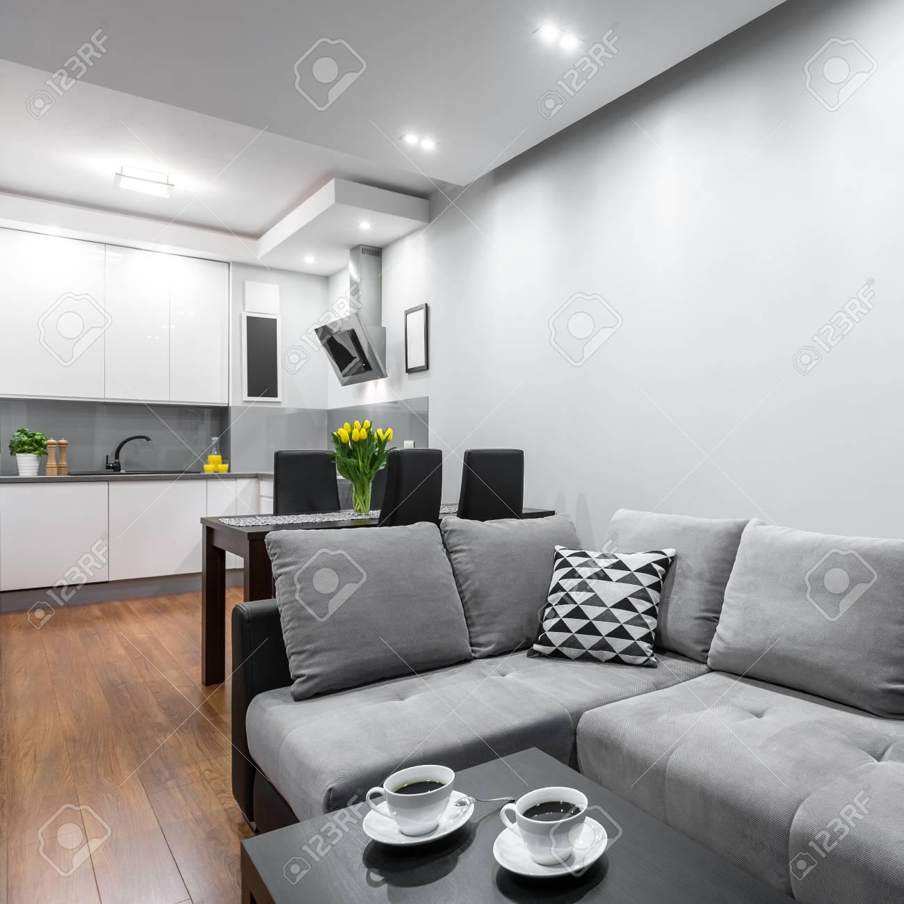 Maison Moderne Avec Un Canapé, Une Table Basse, Salle À Manger Ensemble Et Cuisine Ouverte ...