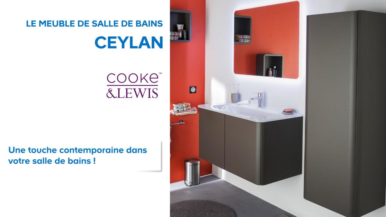Meuble De Salle De Bains Ceylan Cooke & Lewis (648690 pour Salle De Bain Pictogramme