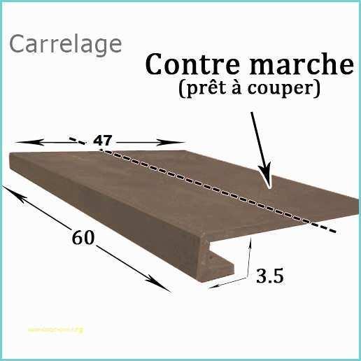 Nez De Marche Terre Cuite Brico Depot Nez De Marche Terre encequiconcerne Nez De Marche Carrelage Terre Cuite