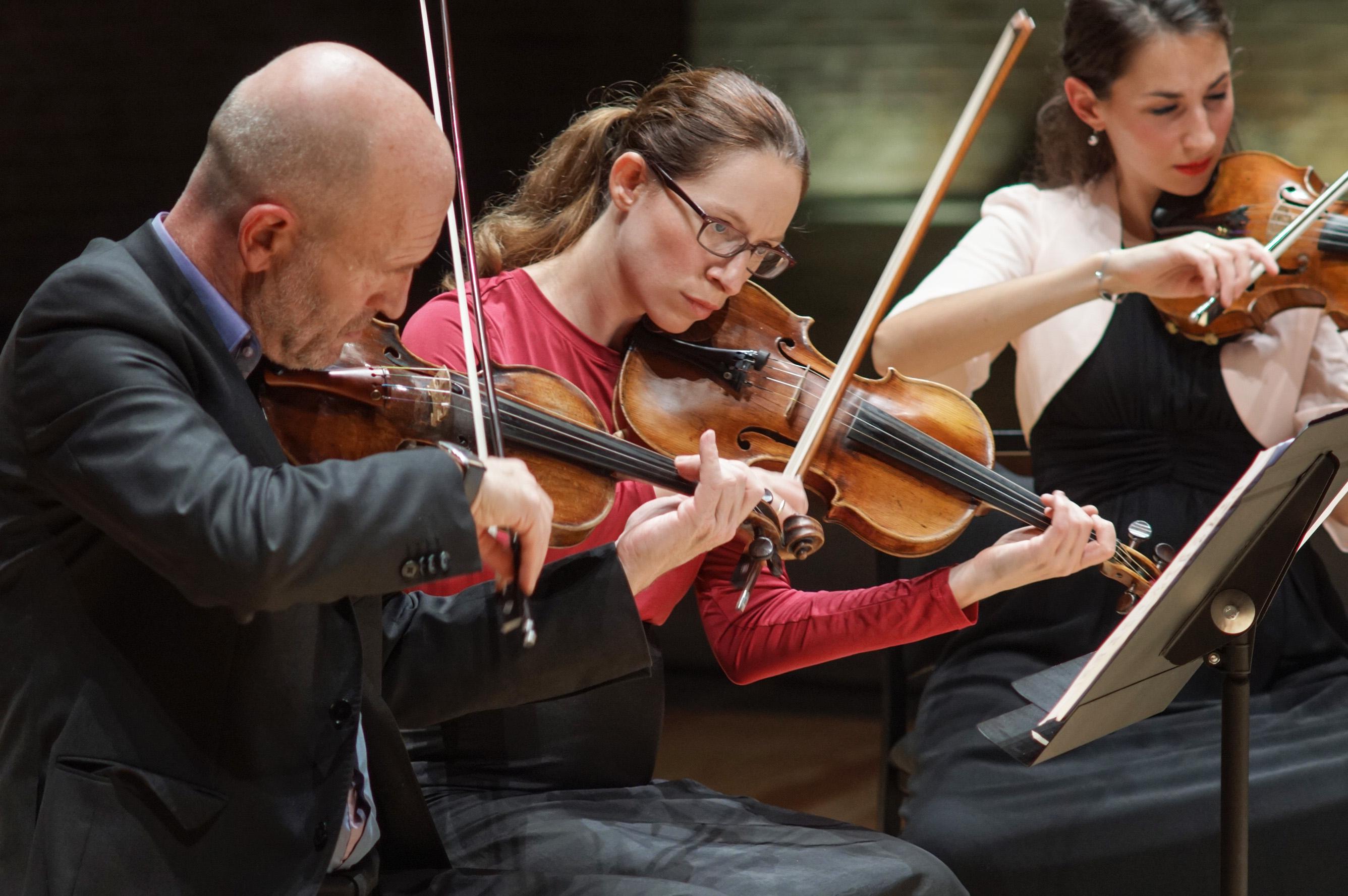 Orchestre De Chambre De Toulouse - Directeur Musical destiné Chambre Des Métiers Toulouse