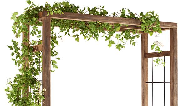 Pergola Bois Ikebana Jardipolys   Jardideco intérieur Arche De Jardin En Bois