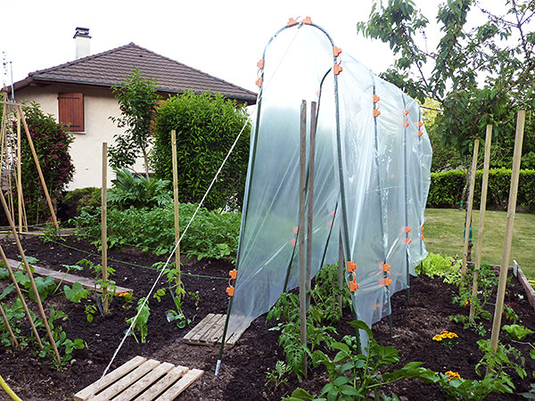 Petite Serre De Jardin Pour Tomate - Mobilier De Jardin Et concernant Petite Serre De Jardin Pas Cher