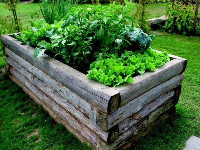 Potage Surleve Avec Rondin De Bois | Carré Potager, Carré pour Carré De Jardin En Bois