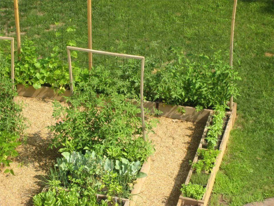 Potager : Idée D'Aménagement   Amenagement Jardin, Potager à Aménagement Potager Idées