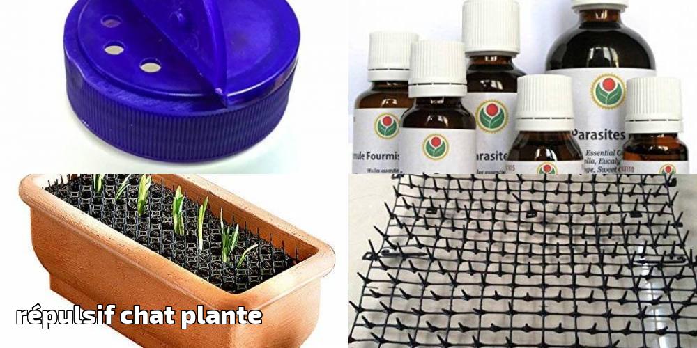 Répulsif Chat Plante Votre Top 10 Pour 2020 | Protection concernant Repulsif Chat Jardin