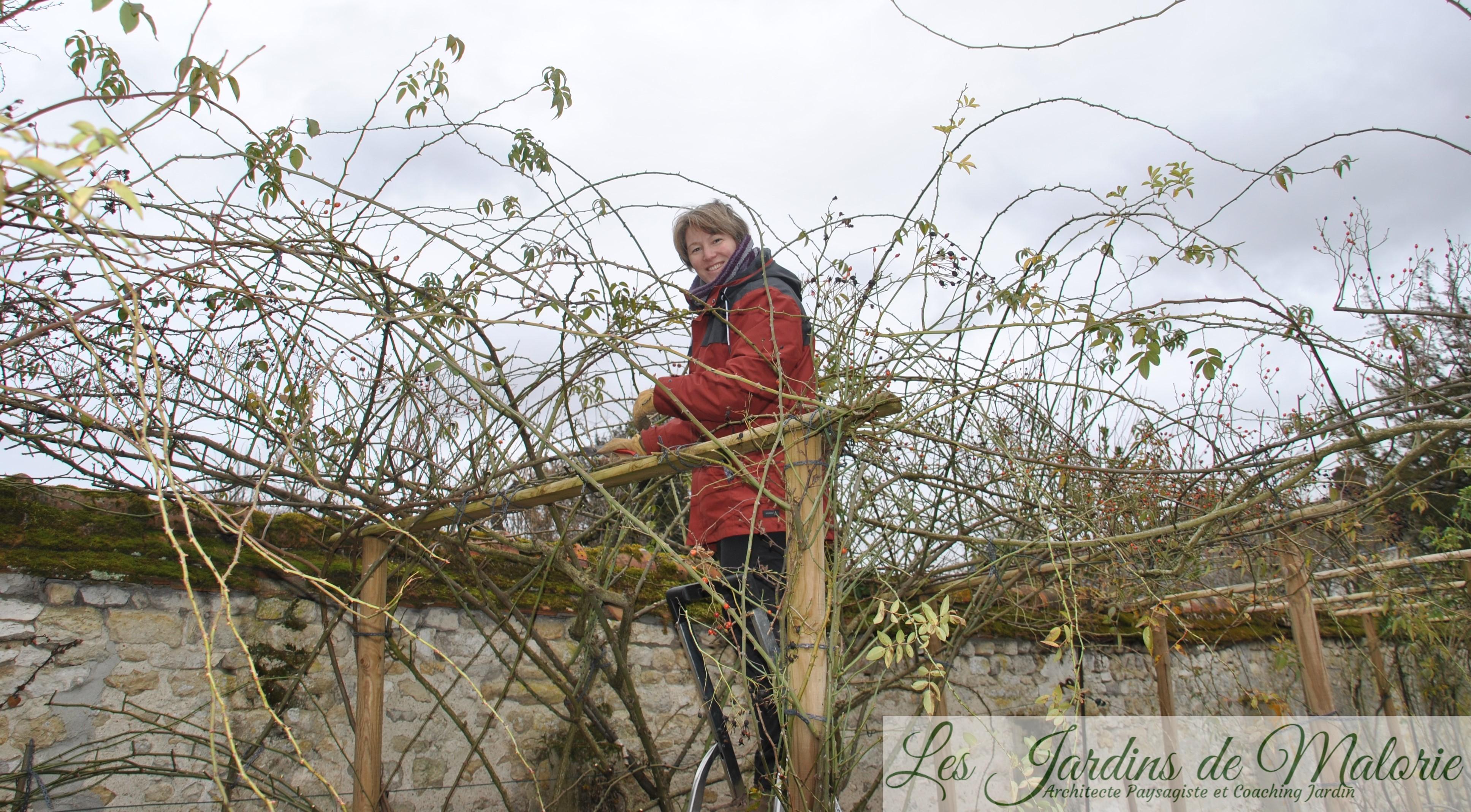Retour D'Une Charrette Au Jardin D'André Eve - Les Jardins avec Charrette De Jardin