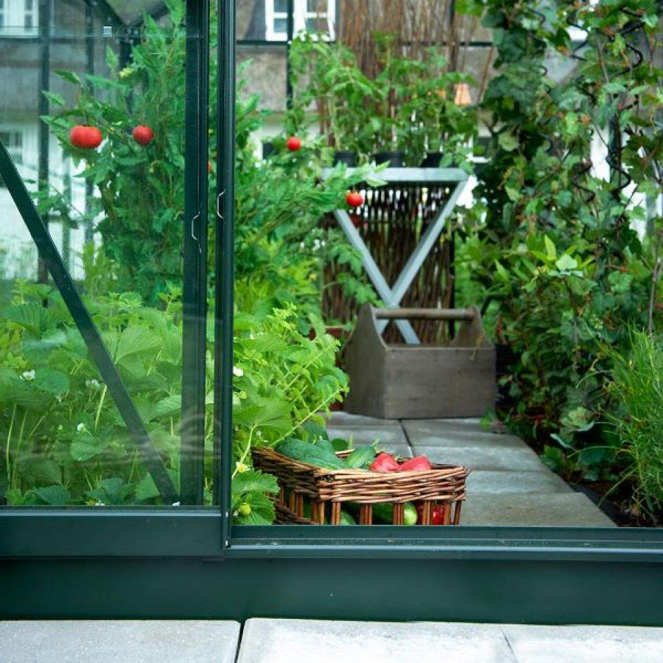 Serre De Jardin Pas Cher - Petite Surface 5M2 - Popular 86 destiné Petite Serre De Jardin Pas Cher