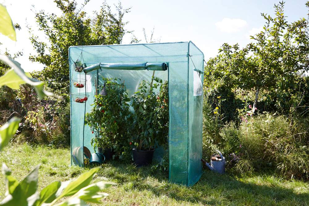 Serre De Jardin Petite, Pas Chère, De Balcon Notre concernant Serre De Jardin Leroy Merlin