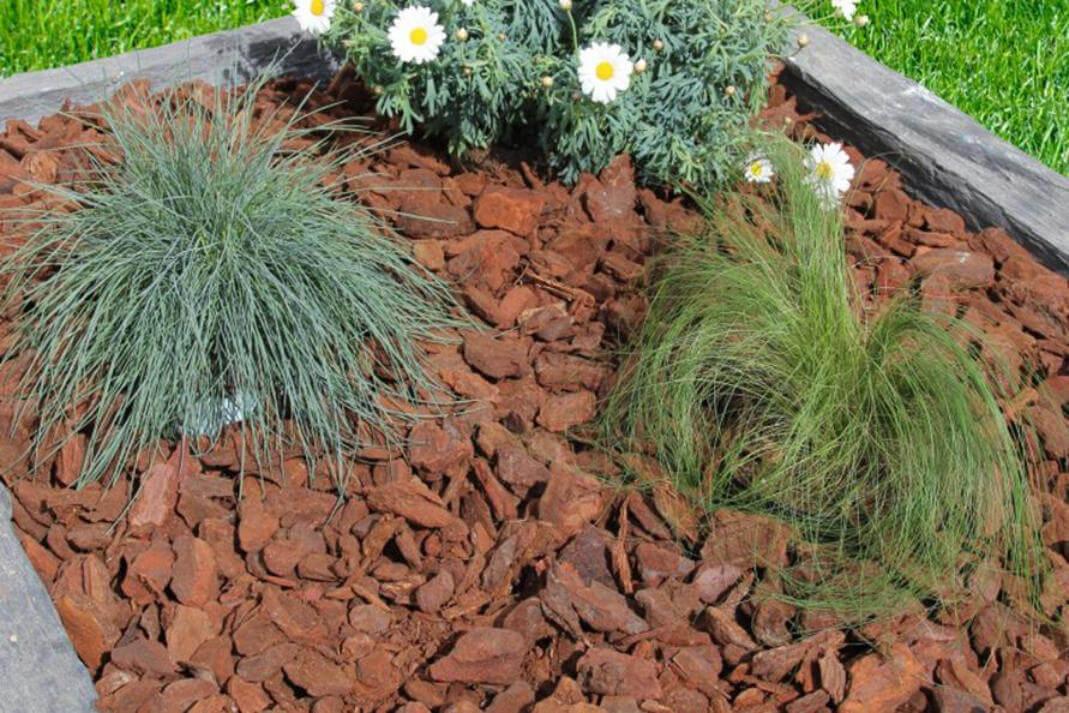 Terreaux - Delobelle & Fils pour Ecorces Jardin