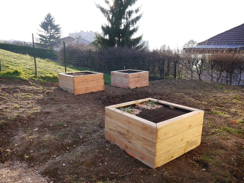 Troisième Jardin En Bois, Un Peu De Bordure Et Plantation dedans Carré De Jardin En Bois
