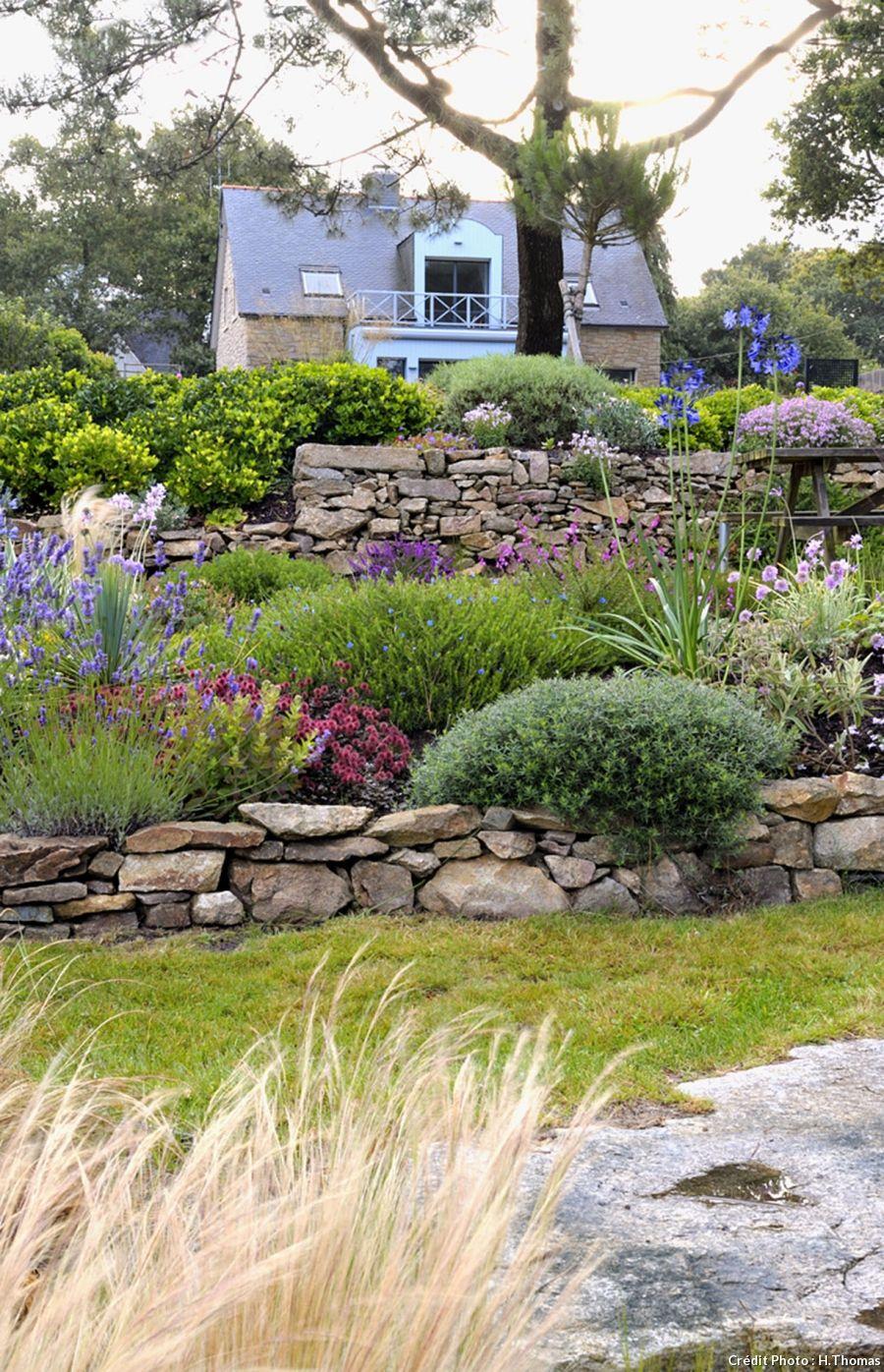 Un Jardin Breton D'agapanthes Et D'hortensias Bleus à Parterre Devant Maison