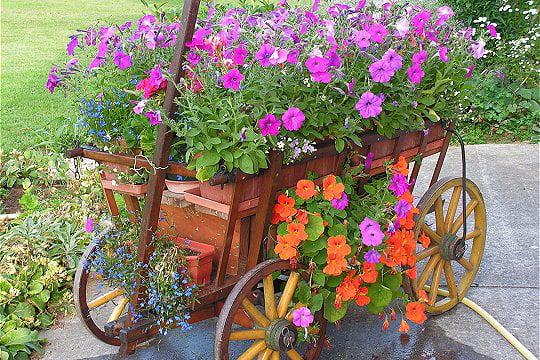 Une Charrette Très Fleurie : Des Pots Et Jardinières Qu'Il destiné Charrette De Jardin