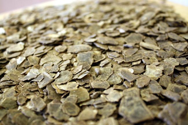 Vermiculite concernant Vermiculite Jardin