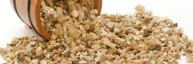 Vermiculite : Usages, Dangers, Comment S'En Protéger pour Vermiculite Jardin