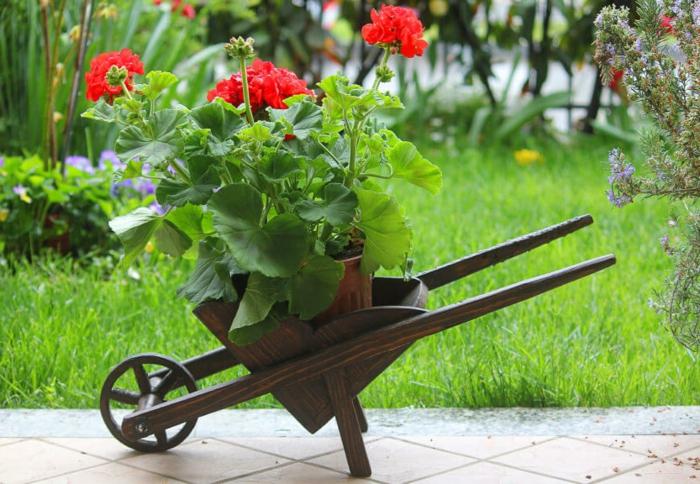 Vous Cherchez Une Idée De Déco Jardin? Trouvez Mille Idées pour Brouette Deco Jardin