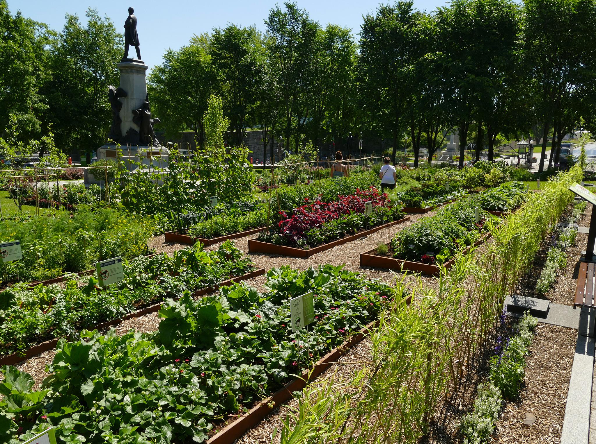 Agriculture Urbaine: Cultiver La Ville | Protégez-Vous.ca destiné Un Jardin En Ville