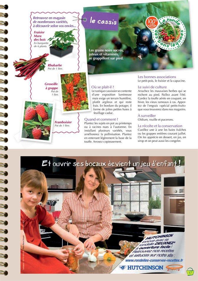 Catalogue Et Promotions De Point Vert | Verger, Groseille avec Point Vert Le Jardin