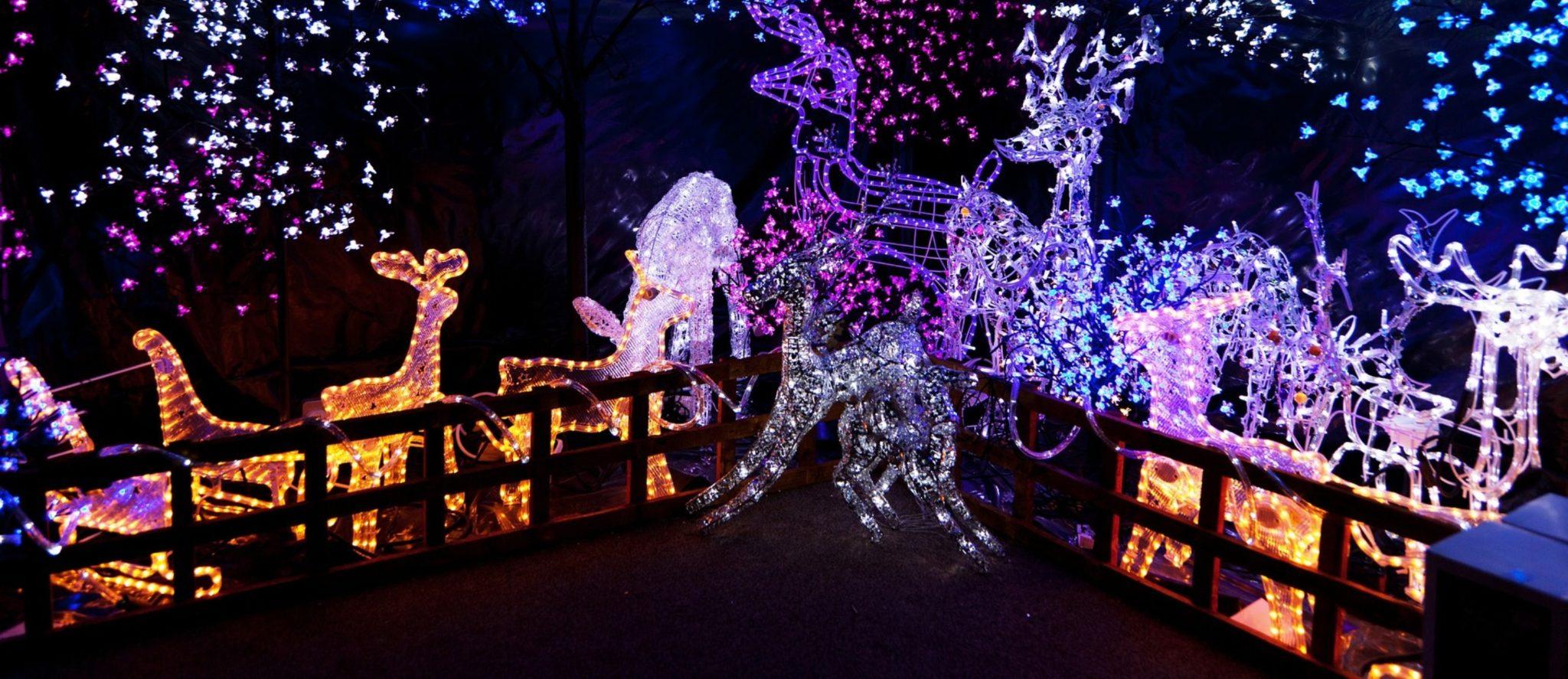 Guirlande A Pile Exterieur - Noel Decoration encequiconcerne Guirlande Lumineuse Exterieur Professionnel