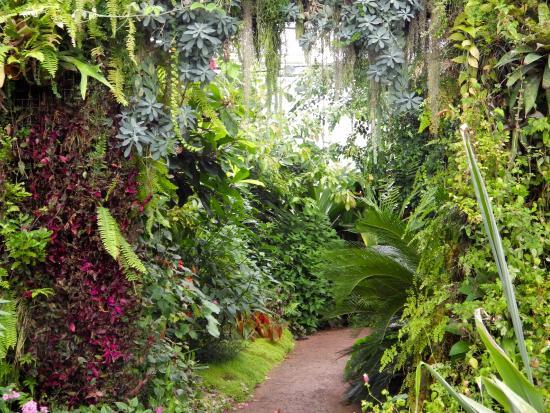 Intérieure Des Serres Tropicales - Picture Of Les Jardins avec Jardin Suspendu Le Havre