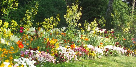 Jardin D'Hubert intérieur Le Jardin Des Fleurs